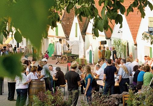 Számtalan pincesor és borút várja a vendégeket, többek között a Mödling és Bad Vöslau között 10 km hosszan kanyargó szőlőskertekben  több mint 80 borász termékét kóstolhaják végig