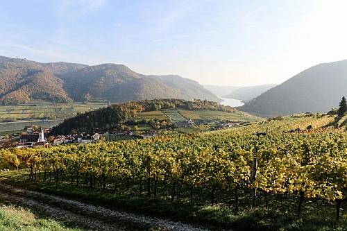 Wachau ősszel Jóval több, mint szimpla borvidék, mesés kastélyok, római kori emlékek és Európa legkedveltebb biciklis útvonala is várja az ide érkezőket