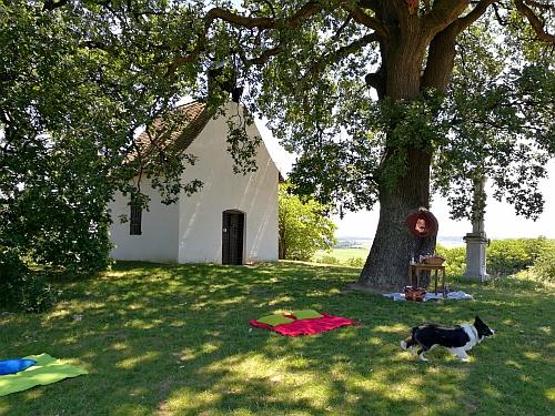 Bátaszéki idill kápolnával, kutyával, piknikkel, borokkal
