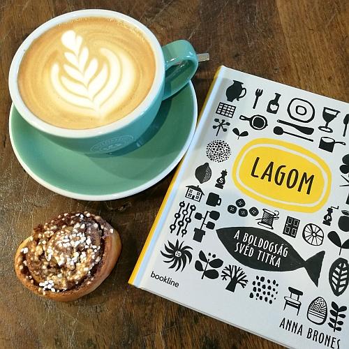lagom1_v